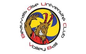 """Résultat de recherche d'images pour """"Volley Beauvais oise université club:"""""""